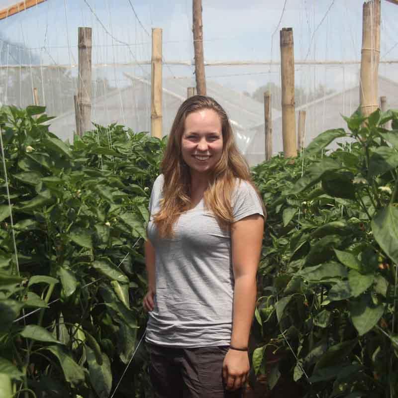 volunteer in agriculture